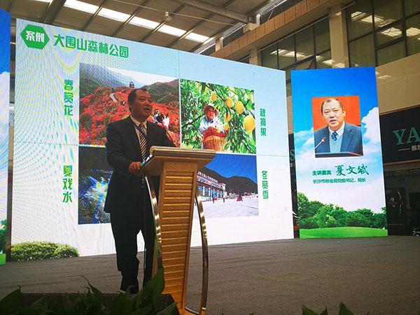 聚焦森林康养 湖南省第四届家博会论坛在浏阳举行