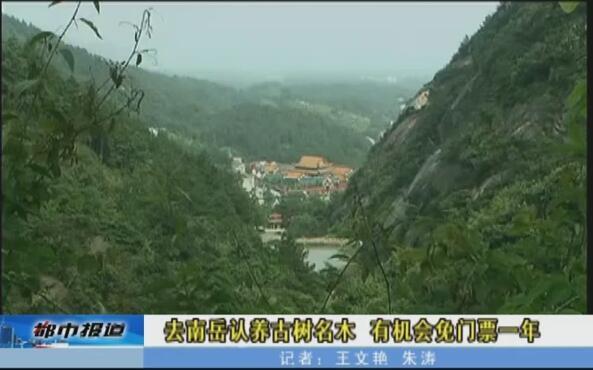 去衡阳南岳认养古树名木 有机会免门票一年