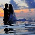 马尔代夫蜜月潜水全攻略:浪漫盛开在海上