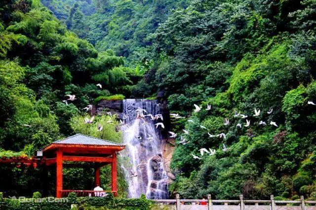 郴州全域旅游卡可免门票两次) 王仙岭是位于郴州市东郊的一个风景区.