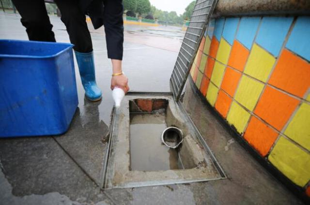 保洁大姐花半小时清洗下水道收水口 获网友集体点赞