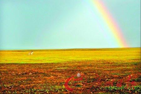 长沙雨后现彩虹