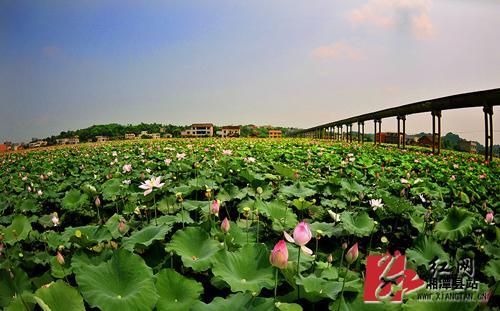 湘潭縣花石鎮入選第二批全國特色小鎮