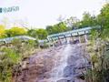 玩玻璃栈道、爬丛林穿越 这个端午嗨翻郴州九龙江!