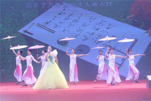 2018怀化洪江市夏季乡村旅游节暨托口杨梅节开幕