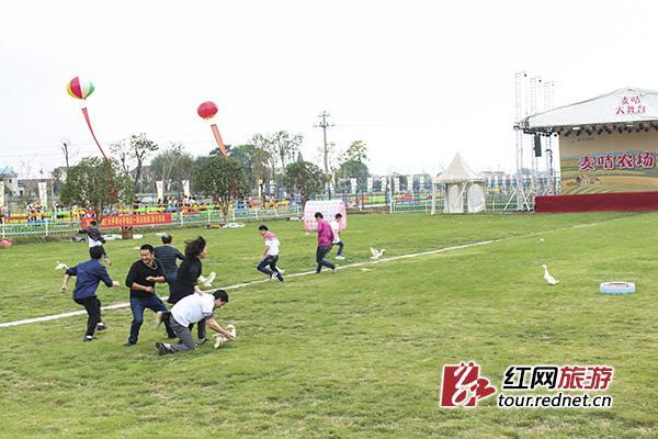 昨日,湖南浔龙河麦咭启蒙岛亲子现代农庄首届农耕文化节开幕,宣布浔
