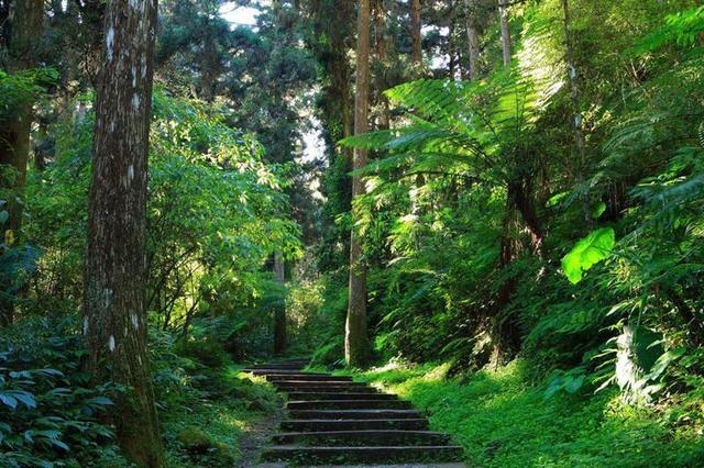 第一批国家森林步道公布 穿过湖南的这条沿途都是好风光