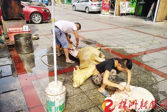 株洲一家餐馆路边杀牛 市民投诉场面太血腥