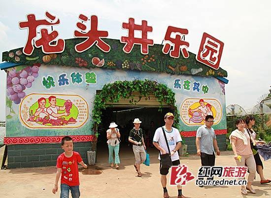 """(今年的""""六一""""儿童节恰逢端午三天假期,位于长沙县江背镇的龙头井现代休闲农庄里一片欢声笑语."""