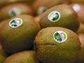016:水果标签真的会污染水果吗?