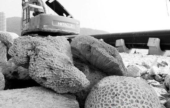 排水管直通三亚国家级珊瑚礁保护区 施工方偷