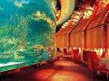 奢华至极的迪拜酒店