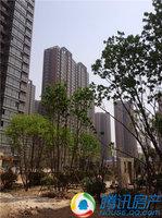 安居东城园林景观日趋完美 全款优惠100元/平