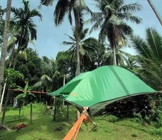 就像创意建筑的书屋床,这悬空帐篷,好想住一晚
