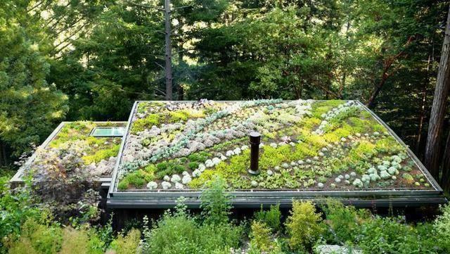 怎样才能不浪费自建房别墅的屋顶 看屋顶花园美不美