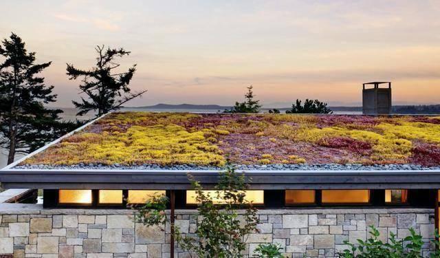 看屋顶花园美不美