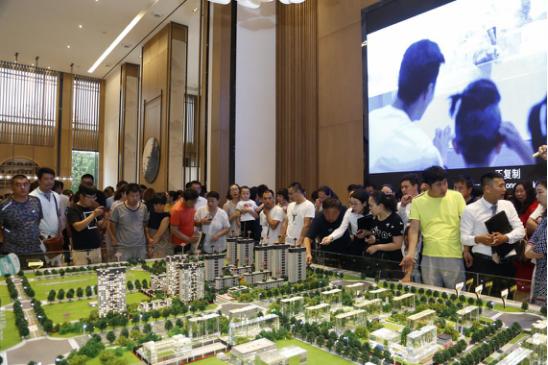 究竟是什么样的示范区开放 引发全城千人争睹?