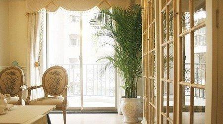 两个人的幸福 优雅少妇130p法式风格公寓   从客厅看阳台    流行稍图片