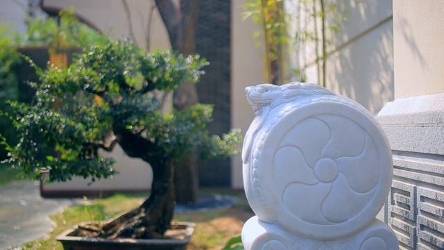 打造美工与传承龙湖景林文化尊重中国醉原著视频扁鹊最强图片