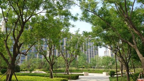 珠江四季悦城打造北京稀缺公园私产 让居住更亲近自然