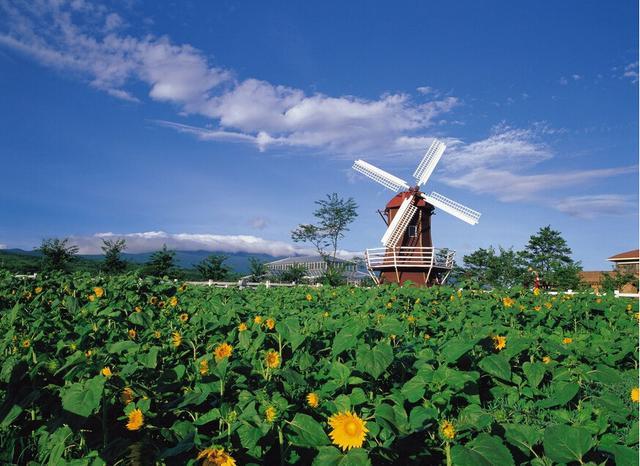 [热盘]绿地汉拿山小镇:移民济州岛享受品质生活