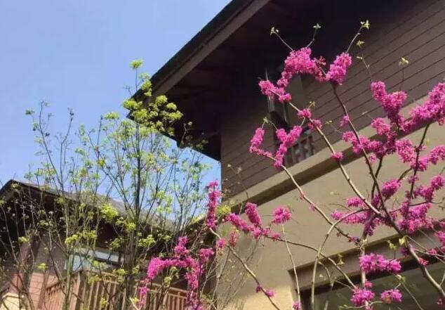 2016年权威发布:花园洋房的6大标准