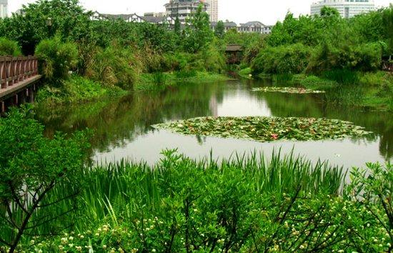城西河景花园洋房 超低密度楼盘