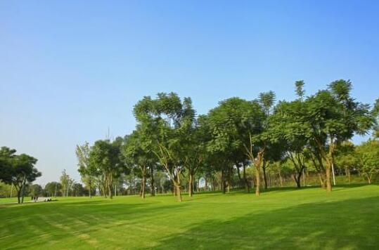 重庆向北新中心,自带世界级IP的中央公园