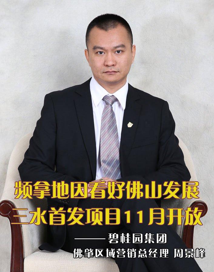 碧桂园 佛肇区域营销总经理周景峰