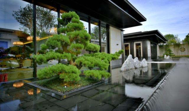 泰禾佛山院子新中式院落别墅首开售罄图片