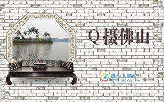 高清组图:Q摄佛山