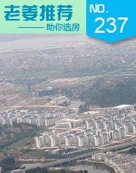 第237期:淘大学城楼盘 5500/�O起感受浓厚教育氛围
