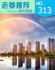 第313期:低总价低首付 5.5万入住一线江景房
