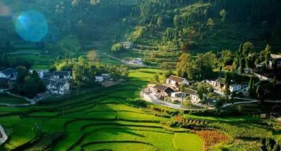 积极发展特色农业产业