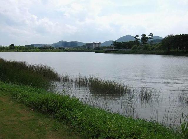 小编踩盘:双河生态美景洋房 实探南沙塞纳河畔
