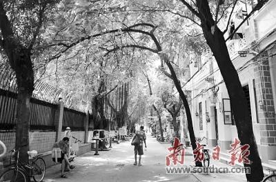 广州将推进逾200个老旧小区换新颜