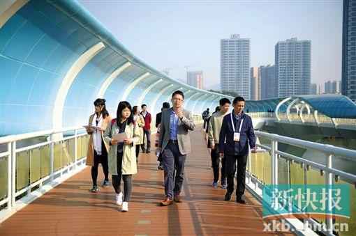 """潜力无限!南沙港""""将成为高水平对外开放门户枢纽"""""""