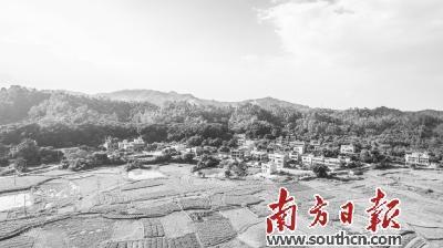 惠州新增88个市级生态村