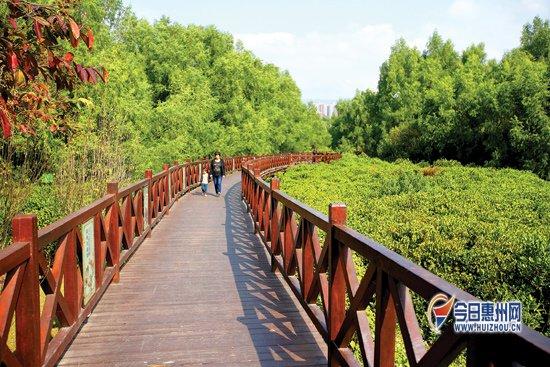 """惠州坚持""""五位一体""""绿色跨越扎实推进生态建设"""