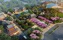 新西塘孔雀城印象澜庭