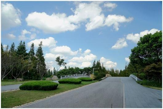 曹山紫竹林生态园展示图片