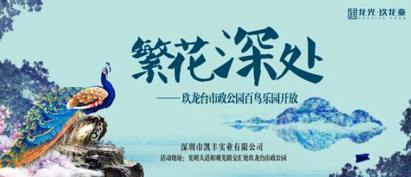玖龙台市政公园百鸟乐园开放 邀你赴场鸵鸟骑乘之旅