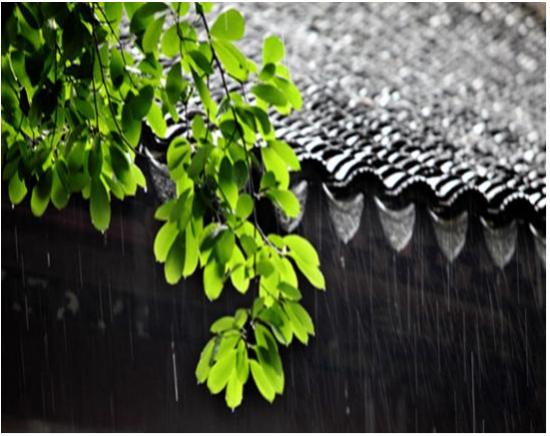 在武汉梅雨天气,怎么过?