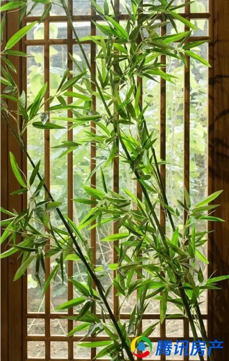 泰禾蓝山院子:院内有竹伴,才有生活