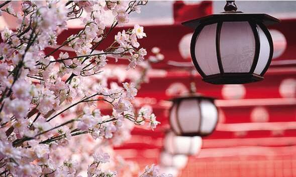 春节出游赏花泡汤备受青睐 各类旅游线路新鲜出炉