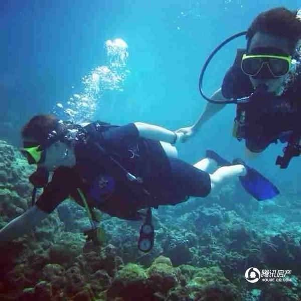 旗滨金銮国际:五一玩转东山岛免费海底潜水