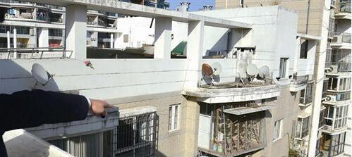 房子这么贵,他竟用楼中楼养鸽子! 邻居备受其扰