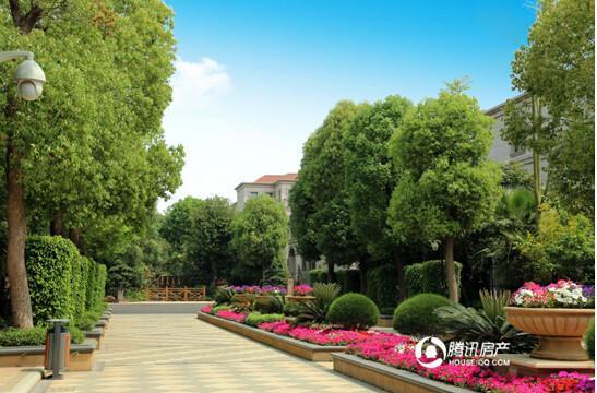 龙泉御墅:280万起享龙泉御墅避暑私家园林