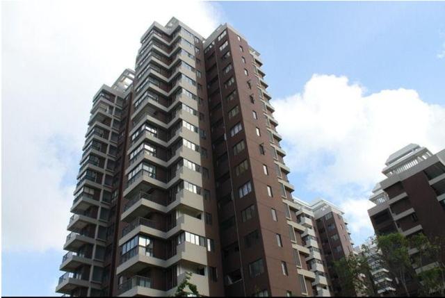 中国年轻人住房拥有率高 多亏了父母的帮助
