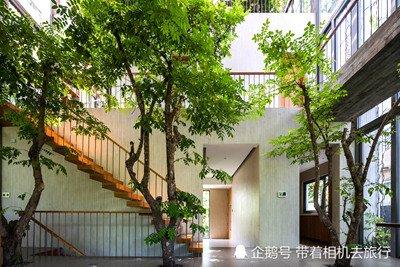 """设计师在越南建造出一栋独特建筑 让绿树和房屋""""共生"""""""